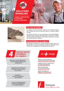 Rats / souris
